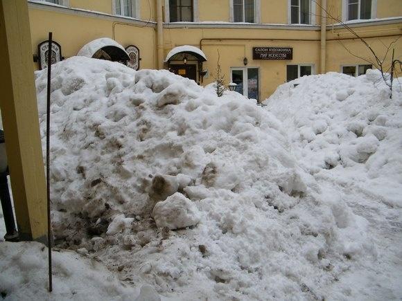 Жителям дома на Невском объясняют, что вывозить снег со двора экономически невыгодно: Фото