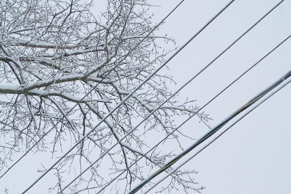Провода облепляет снег. Поставьте мобильники на зарядку!: Фото