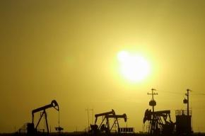 Роберт Дадли прогнозирует рост цен на нефть