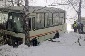 В Новосибирске автобус сбил троих пешеходов