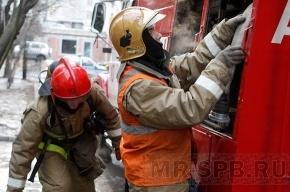 Пожарные вытащили из огня двух мужчин