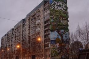 Странное граффити у метро «Комендантский проспект»