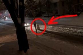 Американского водителя, сбившего снеговика, сперва затравили, потом пожалели
