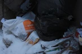 Прогулка по Петроградской стороне: мусор, сосульки, водосточные трубы
