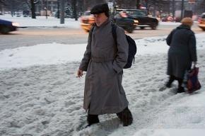 На Дворцовой площади плавят снег