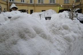 Жителям дома на Невском объясняют, что вывозить снег со двора экономически невыгодно