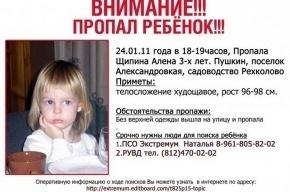 По делу о пропаже девочки задержан отчим