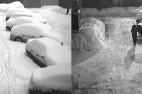 Уборка снега по-питерски