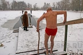 В Московском парке победы сегодня пройдет заплыв моржей