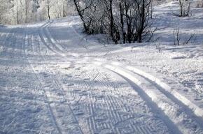 В Таврическом саду работают каток и лыжная трасса