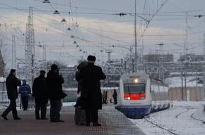 На «Удельной» поезд «Аллегро» сбил двух человек