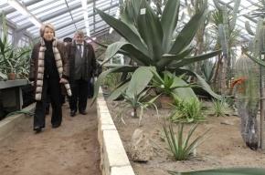 Матвиенко выделила Ботаническому саду два миллиона, чтобы он не рухнул