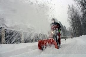В Петербурге похолодает до -7