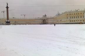 Неужели и в Москве на Красной площади столько же снега, сколько на Дворцовой?