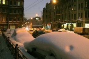 На Кронверкской улице обнаружены удивительные «машины-подснежники»