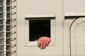 Зоозащитников, пикетировавших Спецтранс, задержали