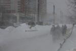 Фоторепортаж: «Метель в Петербурге: не улетали только памятники»