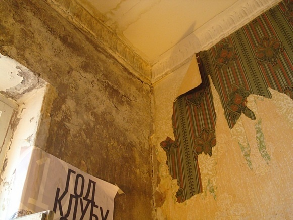 Пострадавшие от протечек горожане проведут пикет: Фото