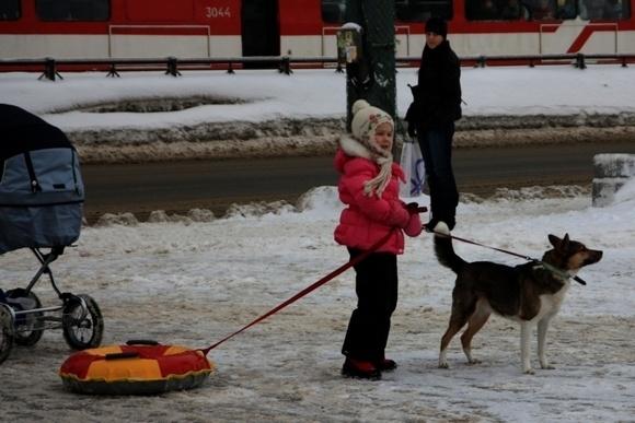 Сквер на улице Ивана Фомина - находка для лыжников: Фото