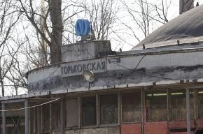 Эскалатор на «Горьковской» не работал несколько минут