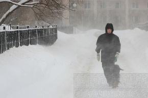 МЧС: в Ленобласти ожидается гололед и сильный снегопад