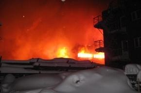 По факту крупного пожара в Перми возбуждено дело