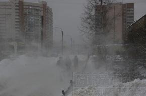 МЧС: в Петербурге и области ожидается метель