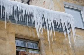 Лед упал на школьницу в Петербурге