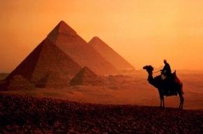 С желающих улететь в Египет берут расписки