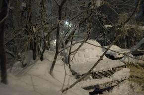 В Ленобласти ждут еще более сильных морозов
