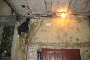 На козырьке дома скопился снег – внутри обрушилась часть стены