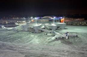 В аэропорту Внуково усиливают меры безопасности