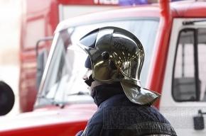 При пожаре у «Ломоносовской» эвакуировали жильцов