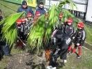 Юные футболисты посадили дерево на аллее Валентина Бубукина: Фоторепортаж