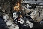 Фоторепортаж: «ДТП с машиной Марины Малафеевой: фото места трагедии»