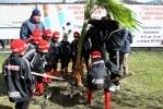 Фоторепортаж: «Юные футболисты посадили дерево на аллее Валентина Бубукина»