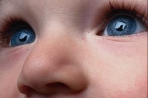 Малыша, рожденного в подворотне, хотят усыновить