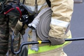 При пожаре на Приморском шоссе погибла женщина