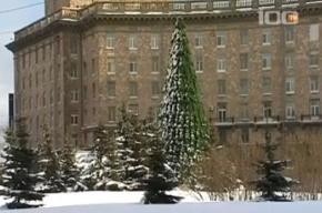 Новогодняя ёлка на Комсомольской площади дождалась весны