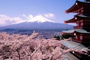 Япония жива и быстро восстановится - верят петербуржцы