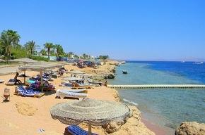 МИД: на курорты Египта ездить можно, но осторожно