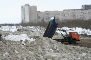 Гринпис проверил свалки снега