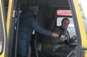 Маршрутка № 479Б столкнулась с легковым автомобилем на Витебском проспекте