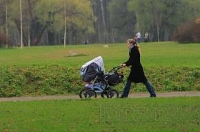 В Ленинградской области стали больше рожать