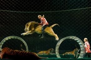 Верхом на льве, головой в пасти тигра