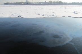 В Неву сбросили нефтепродукты