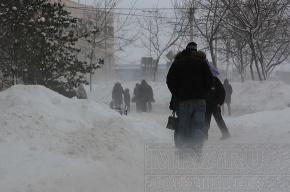 МЧС: в Ленобласти будет штормовой ветер со снегом