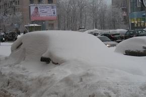 В Приморском районе Петербурга начали убирать автохлам
