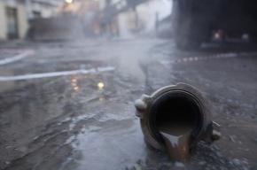 Прорыв трубы на проспекте Просвещения продолжают устранять: горячее водоснабжение не отключали