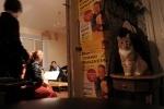 Фоторепортаж: «Квартирники: традиция по-питерски»